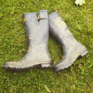 Joules wellington boots